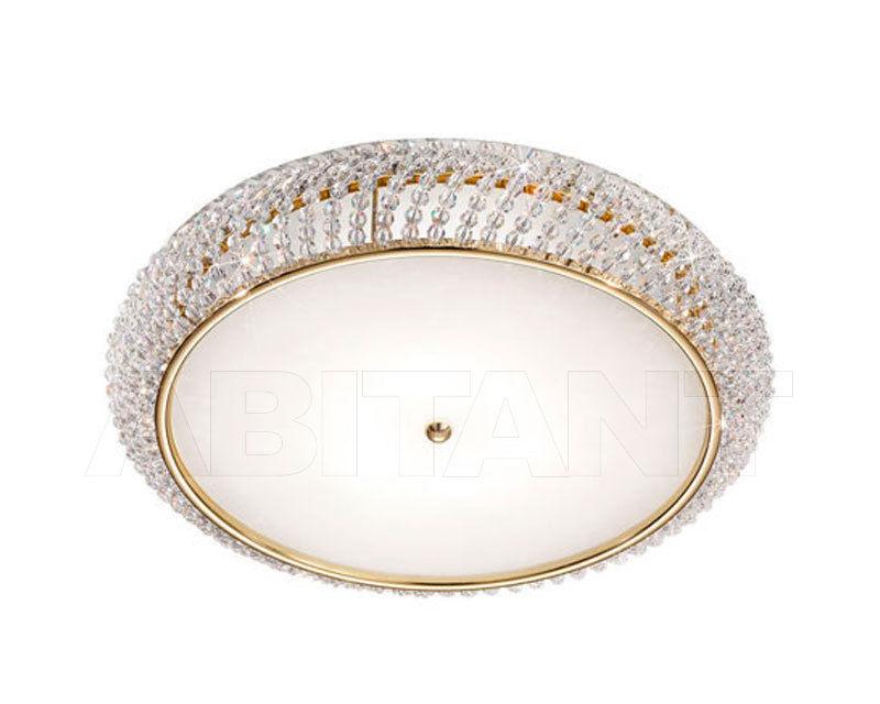 Buy Light CARLA Kolarz 2018 0256.15S.3.SsT