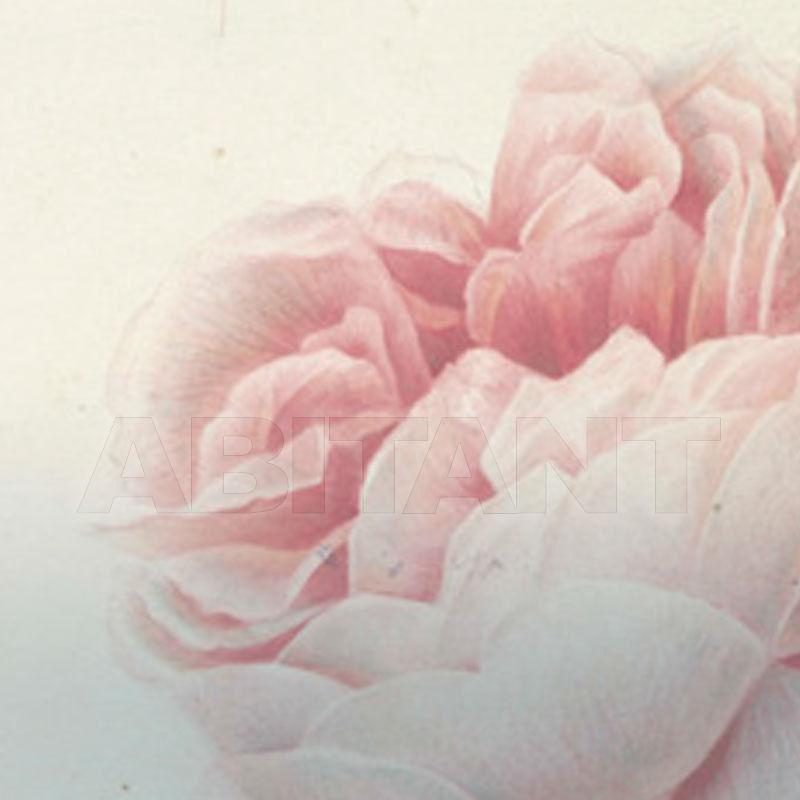 Buy Non-woven wallpaper Tonin Casa 2018 ROMANTIC FLOWERS
