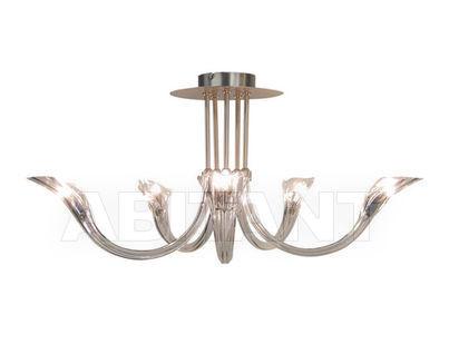 Ilfari lighting with socket g buy оrder оnline on abitant